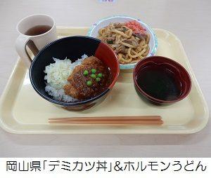 岡山県「デミカツ丼&ホルモンうどん」